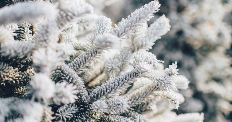 Početak zime: Pred nama je najduža noć u godini