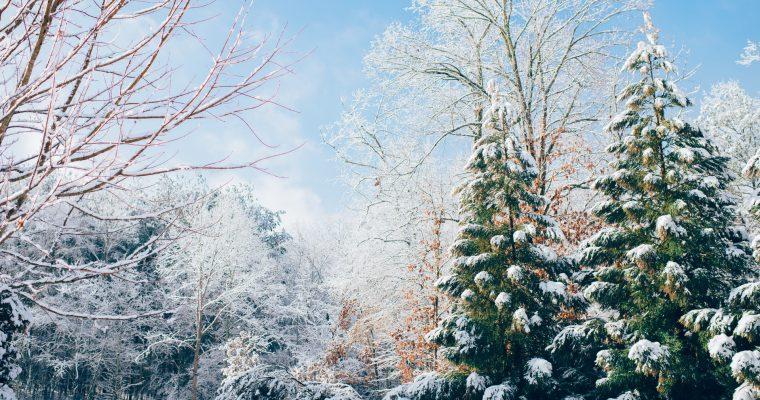Prvi dan zime 2020: Pred nama je najduža noć u godini